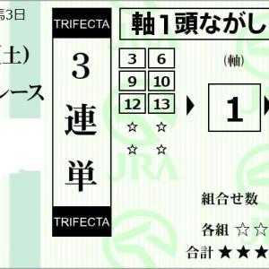 ★公開~購入馬券!★1番デターミネーション中心も2着固定の3連単!★京都12R完結予想