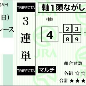 ★公開~購入馬券!★11月17日(日)★京都5R完結予想