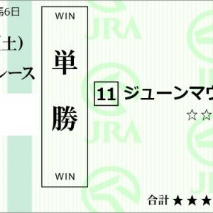 ★公開~購入馬券!★今日の運試しPART2~初出走の2頭に期待!★京都1R完結予想