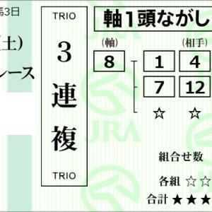 ★公開~購入馬券!★8番エムテイフラッシュに期待!★阪神3R完結予想