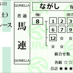 ★公開~購入馬券!★8番ココナッツスルーの激走に期待!★阪神10R完結予想