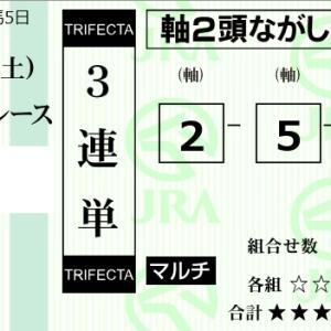 ★公開~新馬戦購入馬券!★直感勝負で3連単馬券購入!★阪神・東京5R新馬戦完結予想