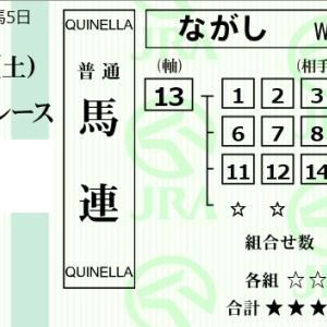 ★公開~購入馬券!★13番メイショウナスカの決め手に期待!★阪神12R完結予想