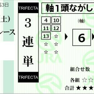★公開~購入馬券!★6番レオテソーロに期待も何かに負ける!?★新潟1R完結予想