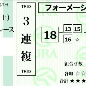 ★公開~購入馬券!★定石通り最外枠18番テリオスヒメのスピードに期待!★新潟12R完結予想