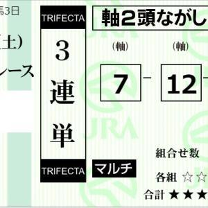 ★公開~購入馬券!★7番サンキューレターVS12番マイネルタイムリー!★中山2R完結予想