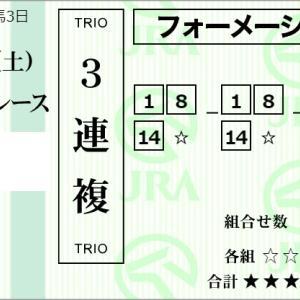 ★公開~購入馬券!★14番アイアンユウキャンに期待!★中山12R完結予想