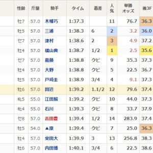 ★公開~高額的中馬券!★上半期のトップ2はいずれも2月の2週続きで最終レース!★上半期万馬券回顧