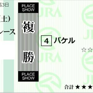 ★公開~複勝転がしラストチャンス購入馬券!★札幌2Rで試してみる!★札幌2R完結予想