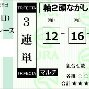 ★公開~購入馬券!★12番ギャリエノワールVS16番ボルゾーバー!★東京6R完結予想