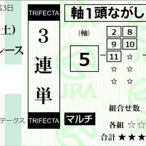 ★公開~購入馬券!★48キロの軽ハンデの5番マリアエレーナに期待!!★中京11R完結予想
