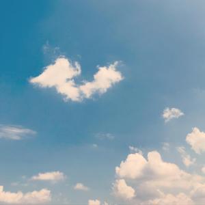 ☆ハナちゃんが旅立った空の色☆