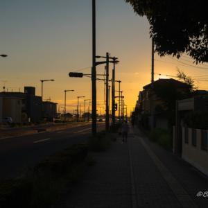 夕暮れ時を散歩