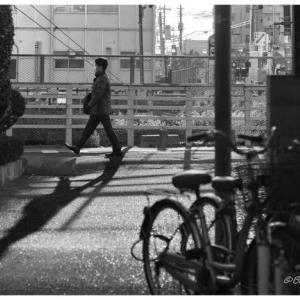 路地から影を撮る