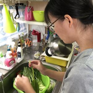 小松菜の漬物作り