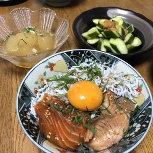 3連休初日の夕食は2.5色丼!