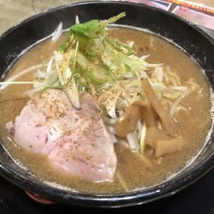 和歌山ラーメンシリーズ:麵屋ひしお「特選煮干豚骨ラーメン」