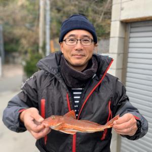 ホウボウ32.1cm(フィッシュダービー2020)俊佳丸