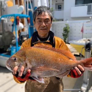 真鯛2595g(フィッシュダービー2020)RYOKA