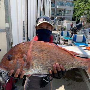 昨日の釣果 大鯛また釣れました。