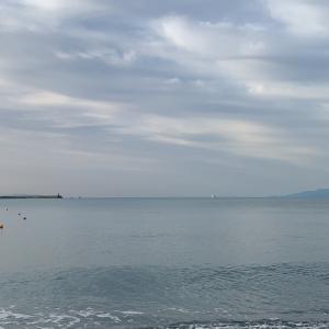 海でれます!