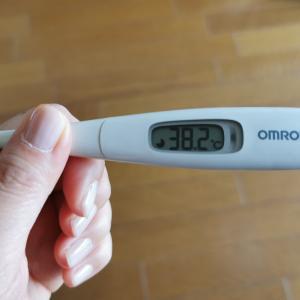 新型コロナワクチン接種2回目★ 翌日・・・熱がなかなか下がらない