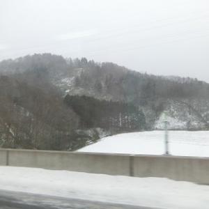 またまた札幌へ♪
