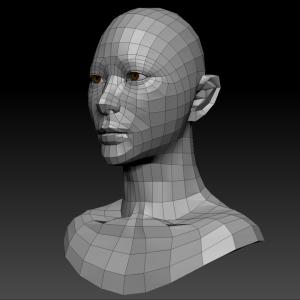 頭部を製作する -219-