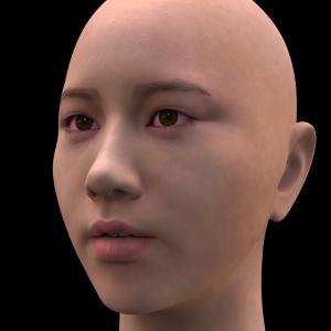 頭部を製作する -206-