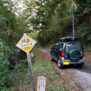 千葉の林道②保田見線 素掘りのトンネル