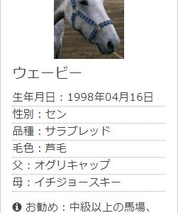 2019_10_16(水)_乗馬(初級馬場)263鞍目(ウェービー)
