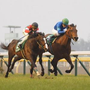 Road to Japanese Derby 2020(共同通信杯)