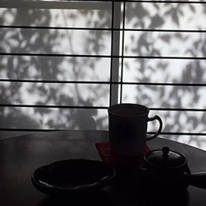 水元公園紅葉の下見~♪