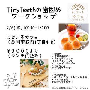 【2月WSのご案内】長岡市でTinyTeethやります【ご予約受付中】
