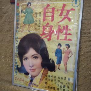 【東宝特撮女優図鑑①】藤山陽子さん・・・美しすぎるBG(ビジネス・ガール)でした