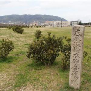 旧幕府軍の敗北、二藩の寝返り 幕末維新
