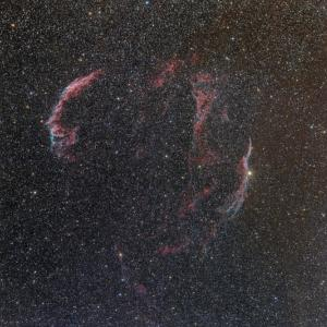 Vixen FL55SS(312mm/F5.7)で撮る網状星雲、夏。
