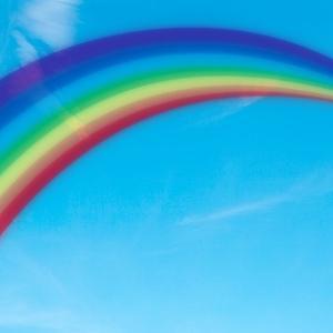 ゼット店長、虹の橋を渡りました。。。