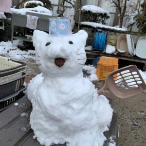 九州佐賀で大雪!