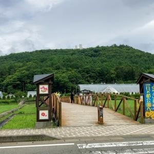 山中湖花の都公園300円駐車料金の元取りは出来るのか!?