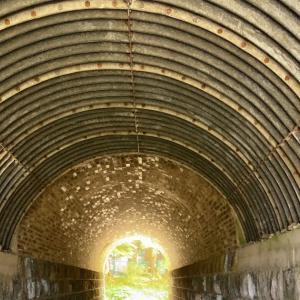 隧道の先の湧水と牛の映える八ヶ岳・・