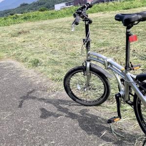 もはやレガシーなのか・・河川敷サイクリングロードの藪漕ぎライド