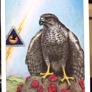 7月12日 バードオラクルカードメッセージ