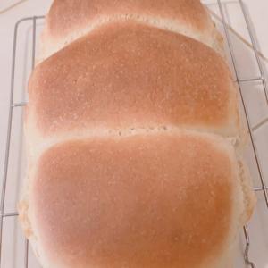 手捏ね派♡焼きたてパンだよん(*´▽`*)ノ