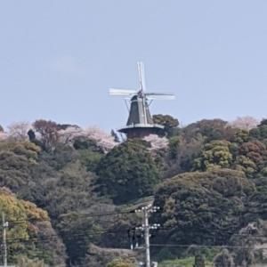 永源山の風車