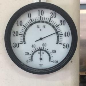 38.3℃
