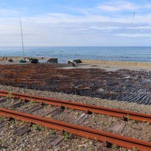 2021年廃止決定、昆布干す浜をゆく日高本線東町-日高幌別