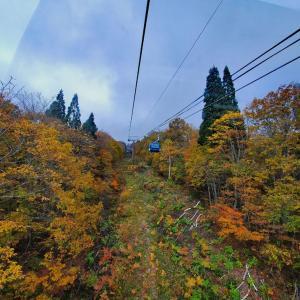 杉ノ原ゴンドラへ乗車♪空中散歩~♪♪