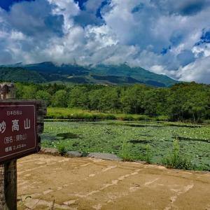 自然散策♪いもり池 ^^