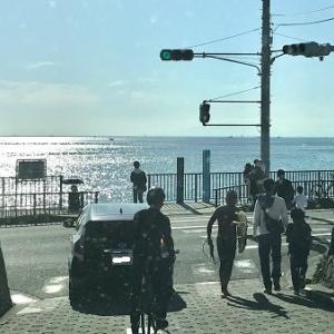 いつもの海散歩
